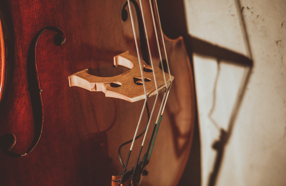 Change Stringed Instrument Strings