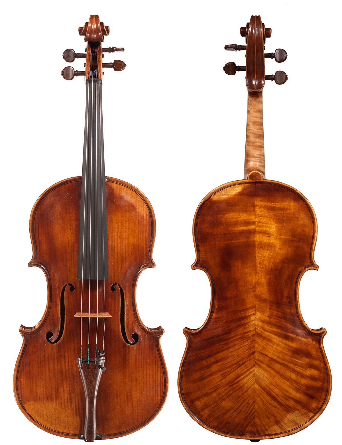 Viola by Celeste Farotto