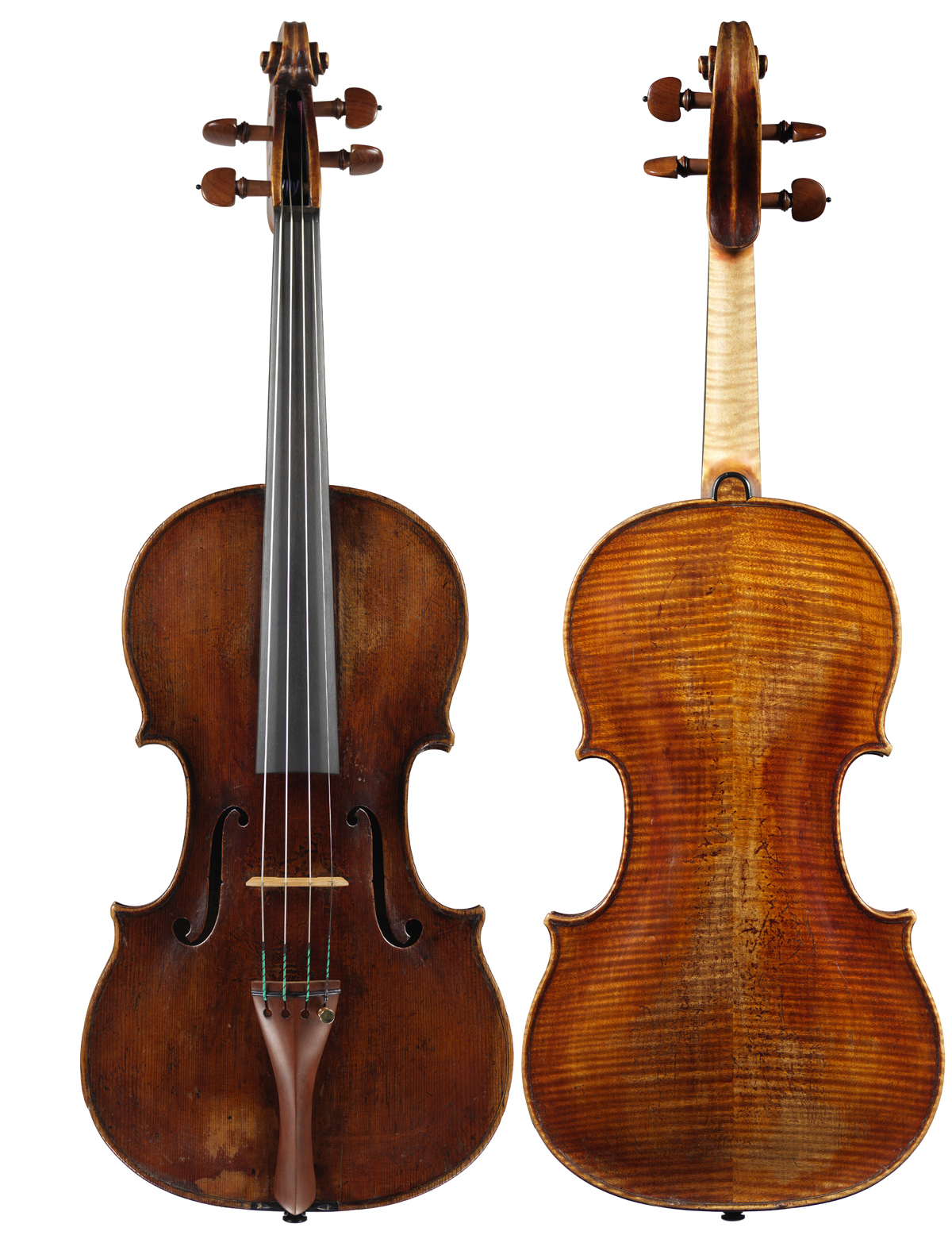 Viola by Tomasso Eberle