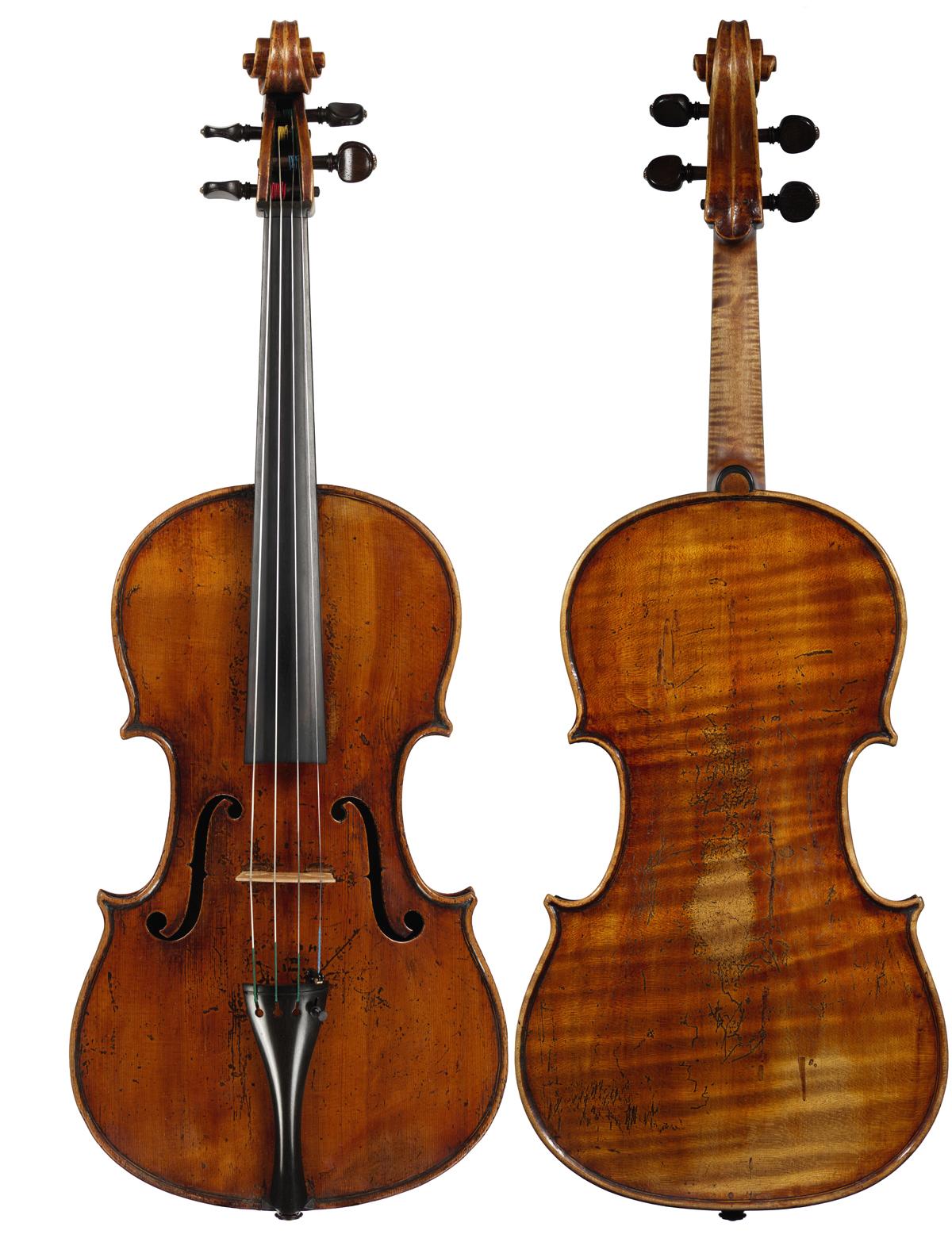 Viola by Carlo Ferdinando Landolfi