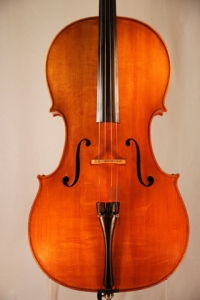 alfredo_gianotti_cello_2007_1