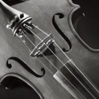 violin_m