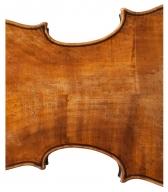 lorenzo-storioni-viola.1