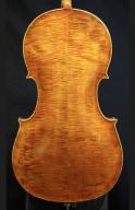 Ettore-Soffritti-cello-back
