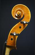 Guy-Cole-Cello-2006-Scroll