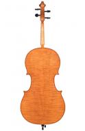 Eric-Benning-Cello-Ron-Feldman-2013-USA-back