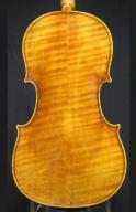 Georg-Meiwes-2016-Viola-Back