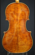 Wojciech-Topa-Violin-2007-Back